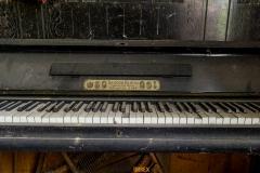 IMGP5906